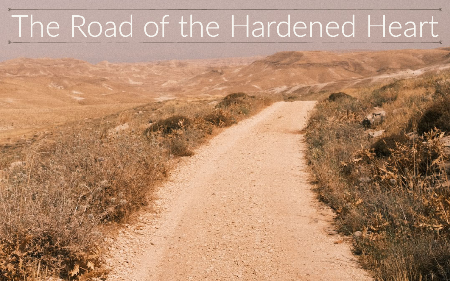 The Road of the Hardened Heart Sermon