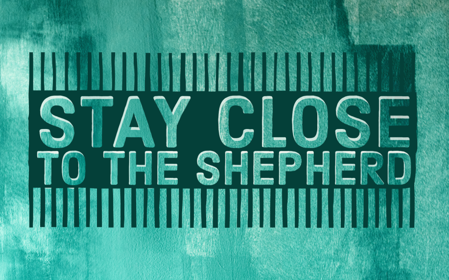 Stay Close to the Shepherd