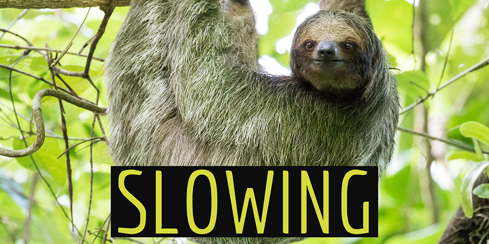 Slowing